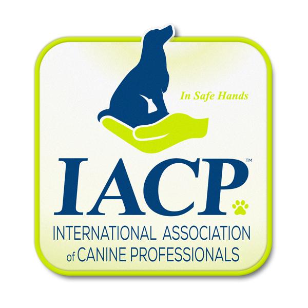 IACP Associate